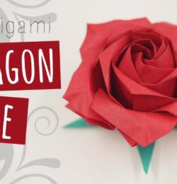 Cách xếp hoa hồng đơn giản theo phong cách Origami