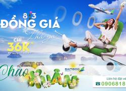 Mừng Ngày 8/3 Đồng Giá Thả Ga..