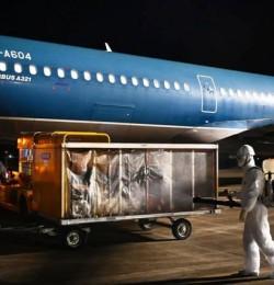 Hàng không Việt Nam khẩn trương triển khai kế hoạch vận chuyển hành khách