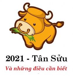 Những điều cần biết về năm Tân Sửu 2021