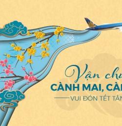 MAI ĐÀO ĐÓN TẾT CÙNG VIETNAM AIRLINES VÀ PACIFIC AIRLINES